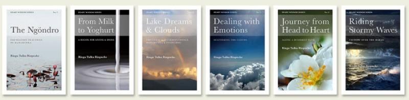 Heart Wisdom Series Set
