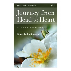 Journey from Head to Heart