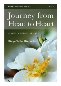 Heart Wisdom - Journey from Head to Heart