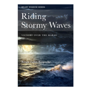 Riding Stormy Waves