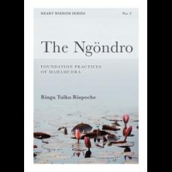 The Ngondro