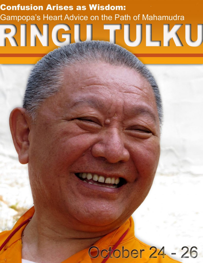 Ringu Tulku at KTD