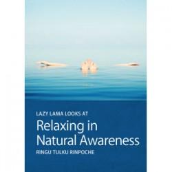 Relaxing into Awareness