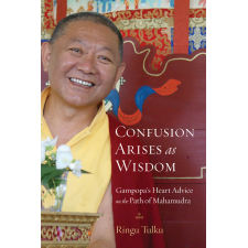 Confusion Arises as Wisdom Ringu Tulku Rinpoche
