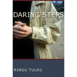 Daring Steps Ringu Tulku