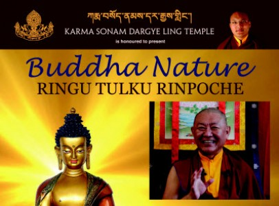 RINGU TULKU poster small-cr