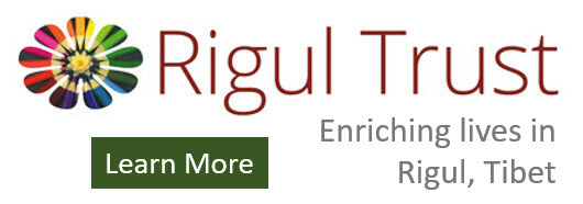 rigul-button